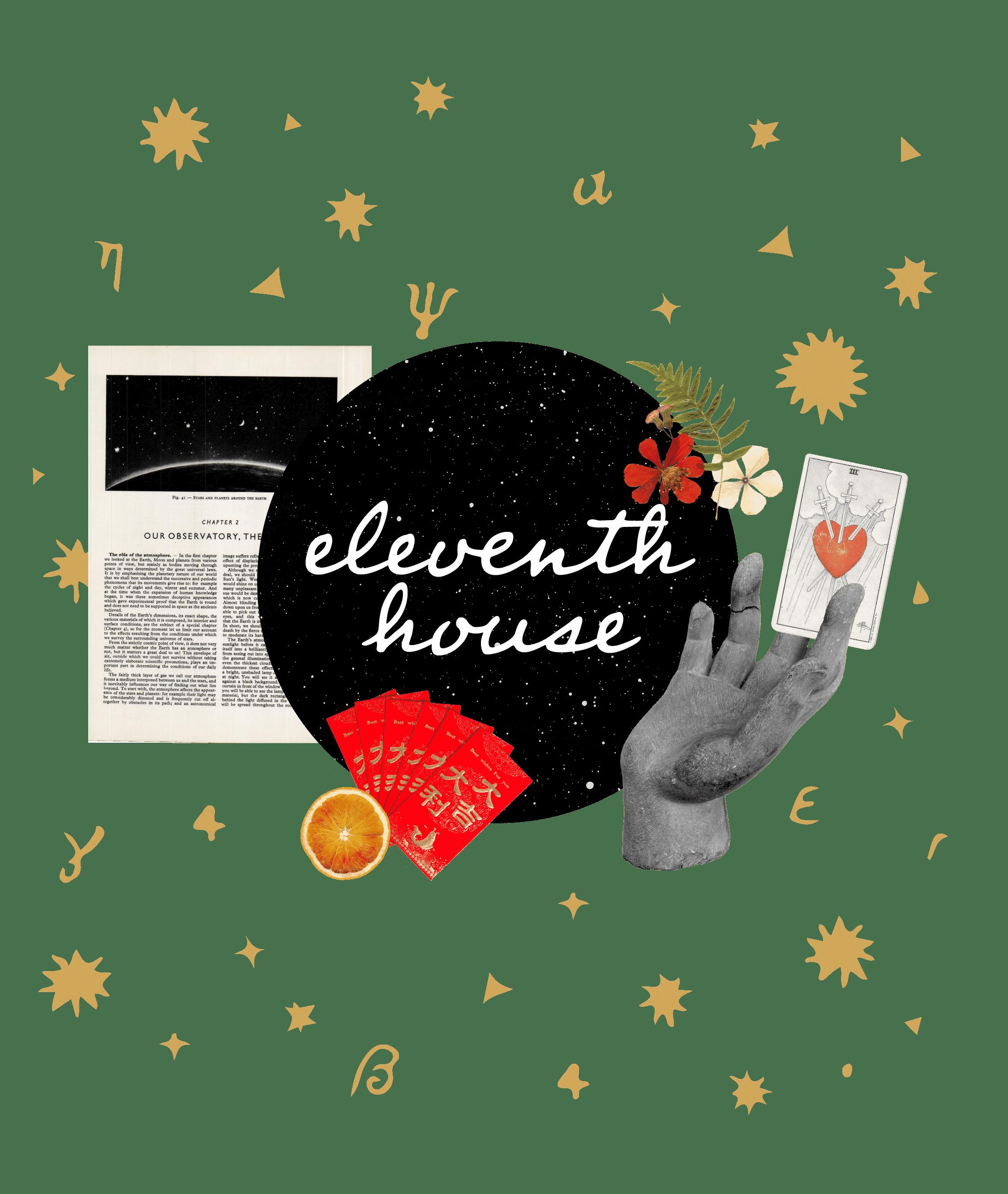 Eleventh House: A Koffler.Digital Project on Astrology